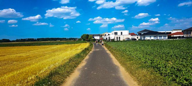KÖLNPFAD, Etappe 10: Entlang des Rheinufers und durch die Felder von Wahn nach Zündorf (19,2 km)