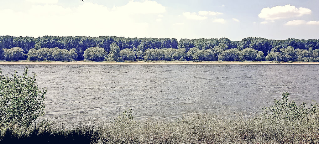 Vom Yachthafen Zündorf zur Rodenkirchener Brücke: KÖLNPFAD, Etappe 11